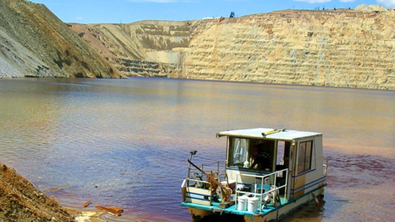 Miles de gansos mueren en lago contaminado de antigua mina en Montana la...