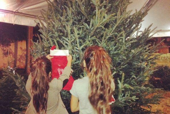 También publicó una foto de sus hijas eligiendo el árbol para su casa, y...