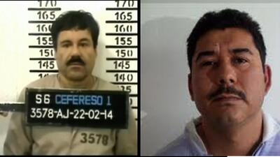 La captura de El Chapo pudo darse de manera fortuita