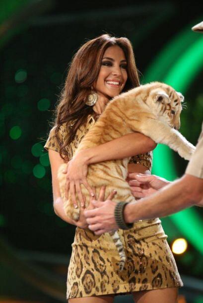 Gabriela Álvarez tuvo que cargar a un tigre, quien al principio se resis...