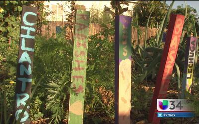 Parcela comunitaria en Boyle Heights en riesgo de desaparecer