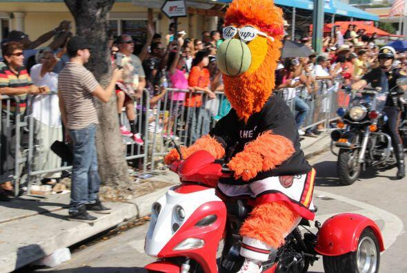 La mascota oficial de los Miami Heat, Bernie! Es un loco y se la pasaba...