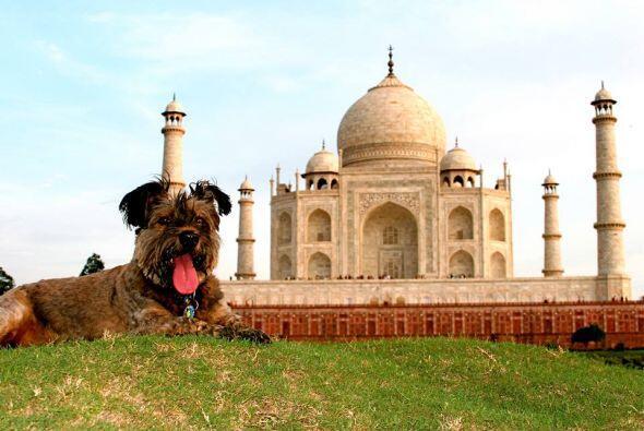 Oscar pudo sentir la tranquilidad de estar en el Taj Mahal en India y ta...