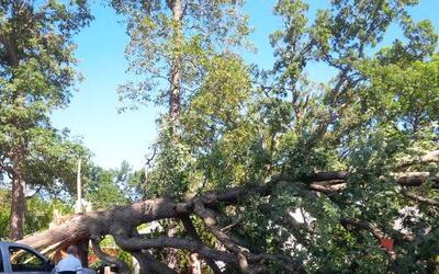 Mira las imágenes de los destrozos que causó un tornado a su paso por el...