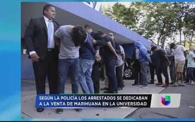 Golpe a punto de drogas en recintos de la Universidad de Puerto Rico