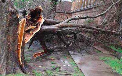 Daños por tormentas en Houston