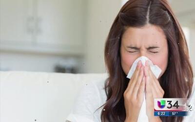 ¿Funciona la sopa de pollo para tratar la gripe?