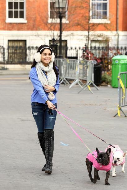 Sola o acompañada de sus mascotas, Vanessa no deja de estar en constante...