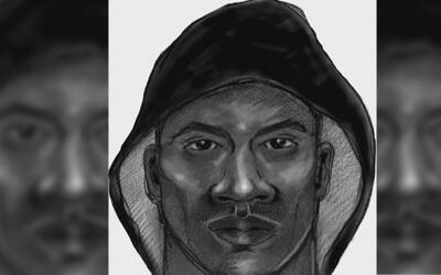 Con cuchillo en mano, un hombre intentó violar a una joven en un callejó...