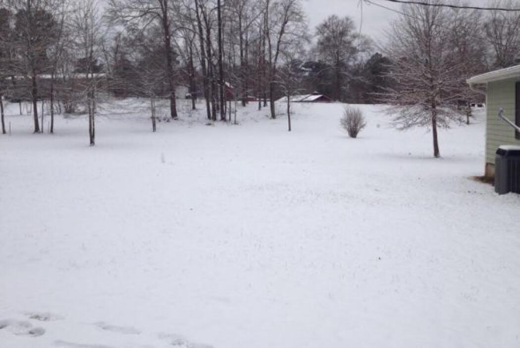 Imagen enviada por Jesus Alyeri Brayden desde Milledgville, Georgia.