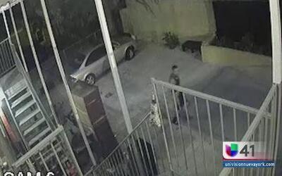 Policía busca a pervertido en El Bronx
