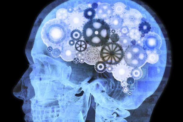 8. Mejora la función cerebral  Si te sientes un poco olvidadizo, las cer...