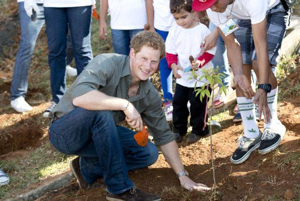 Ahi incluso se ensució las manos para ayudar a plantar un árbol en la vi...