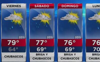 Cielo parcialmente nublado y temperatura fresca para este viernes en Miami