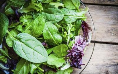 Entre las hojas verdes, la rúcula o arúgula, como se la conoce en nuestr...