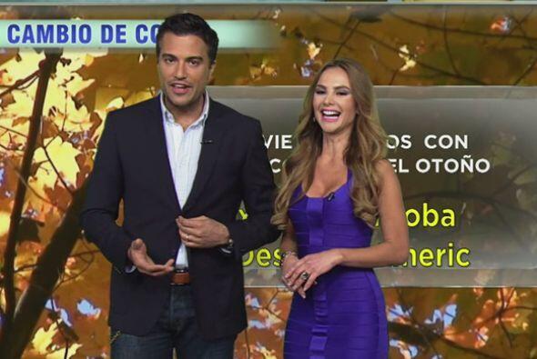 Mayrín Villanueva, Jaime Camil, Pedro Moreno en Despierta América
