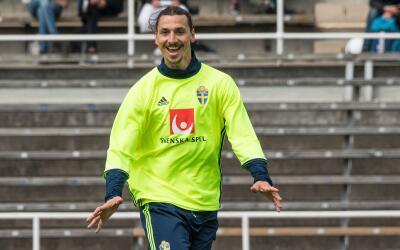 El entrenador de Suecia confesó que Zlatan marcará una era en el deporte.