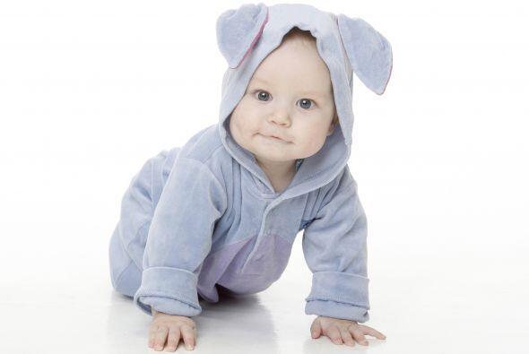 Dato curioso. Los bebés nacidos en verano y en otoño tiend...