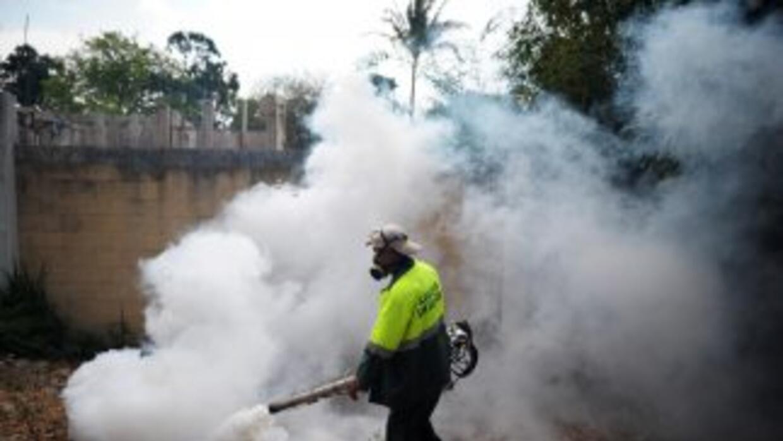 En 2012 el dengue causó en El Salvador al menos seis muertos.