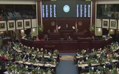 ¿Los niños no son una prioridad para el estado de la Florida?
