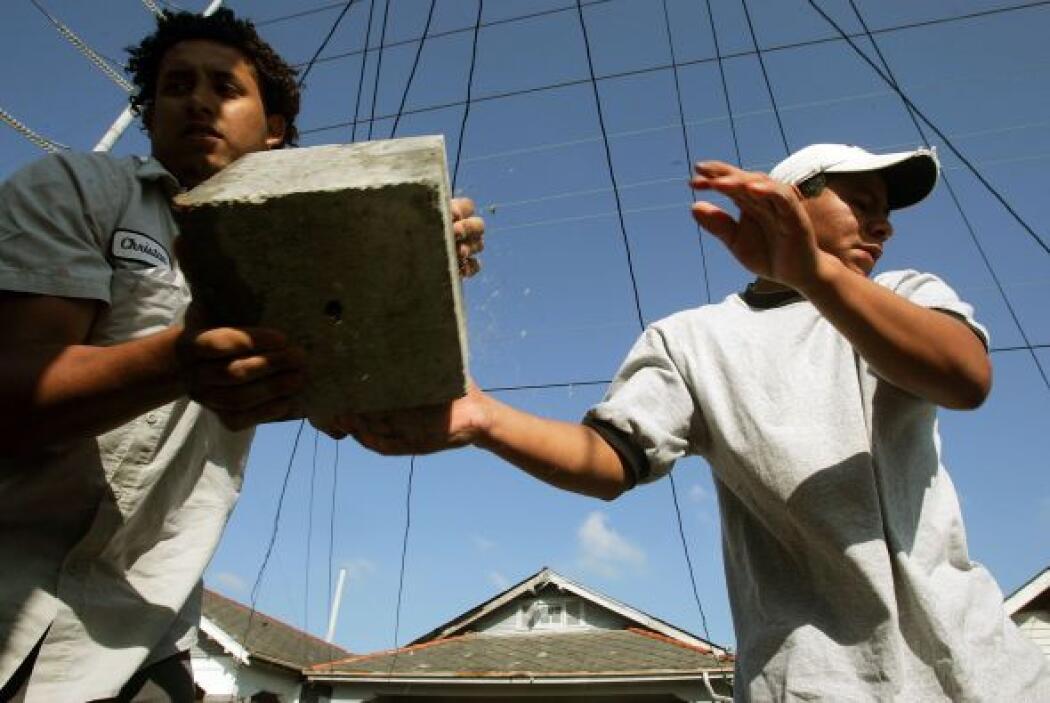 Construcción  % de latinos que la desarrollan- 24.4%  ¿Qué actividades s...