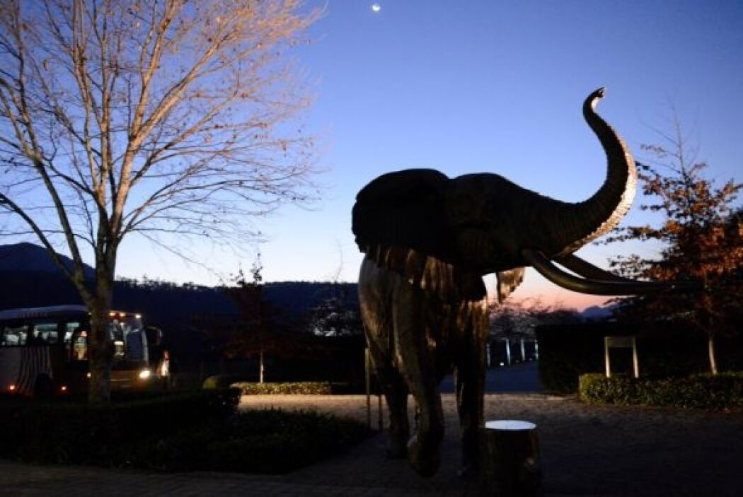 Aunque el primer elefante que vio es de metal.