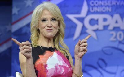 """Kellyanne Conway sobre Trump como presidente: """"Él y su familia se están..."""