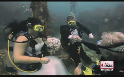 Se dieron el sí en el fondo del mar