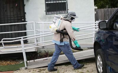 Hombres de tres condados de Florida no deben donar semen para evitar pro...