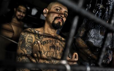 Un pandillero de la Mara Salvatrucha, una de las bandas más grandes de E...