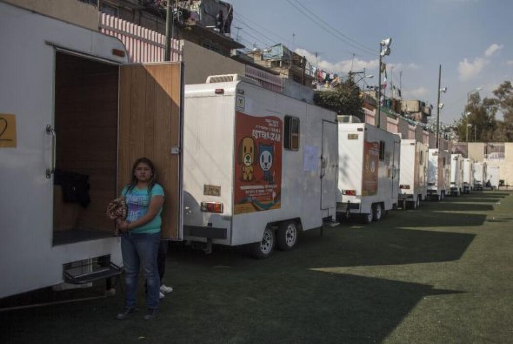Algunos de quienes se manifestaron en Ciudad de México en defensa de los...
