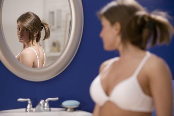 Su función primaria es proteger y sujetar la glándula mamaria. Este es u...
