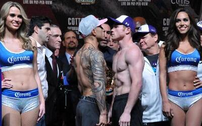 Cotto Canelo Pesaje