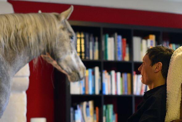 Y es que las personas que se dedican a criar caballos, tienen un espacio...