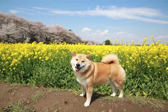 Casi en todas las fotos de sus redes sociales, Maru sale disfrutando al...