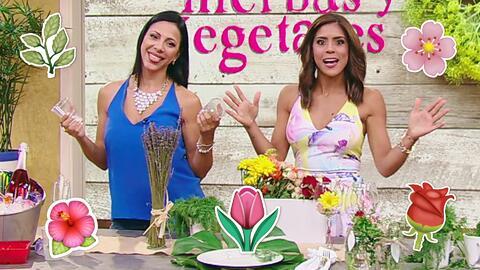 Mesa al natural: Aprende cómo decorarla con hierbas, flores y vegetales