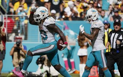 Los Dolphins despedazaron a los Steelers 30-15
