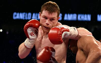 Así le fue a 'Canelo' Álvarez en sus peleas en Las Vegas