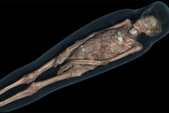 Las momias fueron seleccionadas entre todas las del museo para cubrir un...