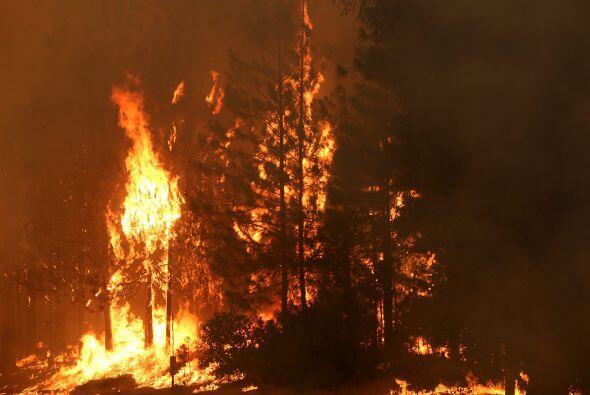 Este incendio estaba entre las principales prioridades, según informó el...