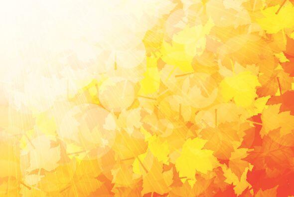 El otoño ya se siente en el ambiente, su luz y colores tan característic...