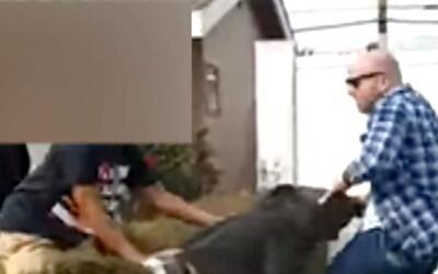 'Los Ángeles en un Minuto': Autoridades revelarán detalles del altercado...