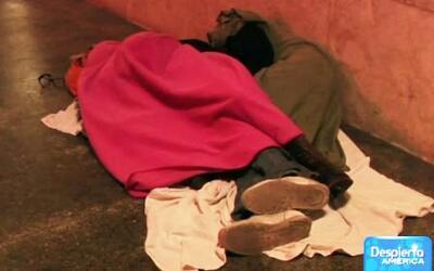 Gran número de niños desamparados por las calles de Miami