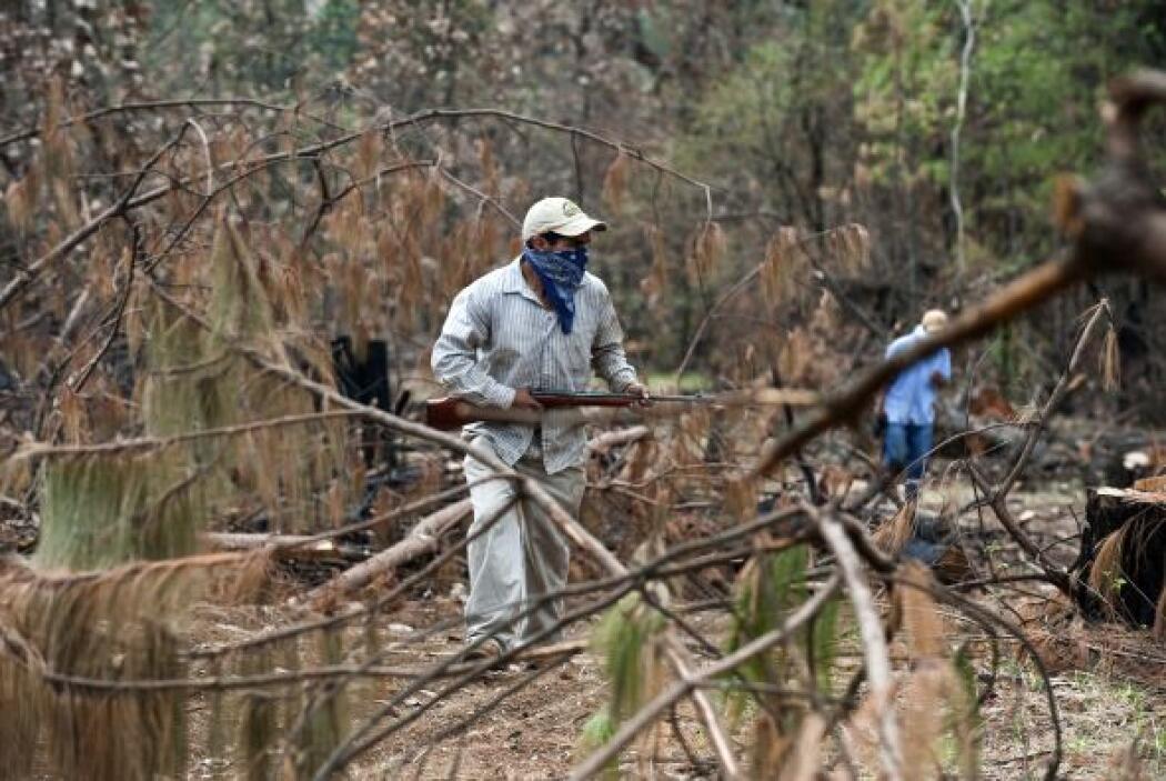 Michoacán es uno de los estados más afectados por el crimen organizado.