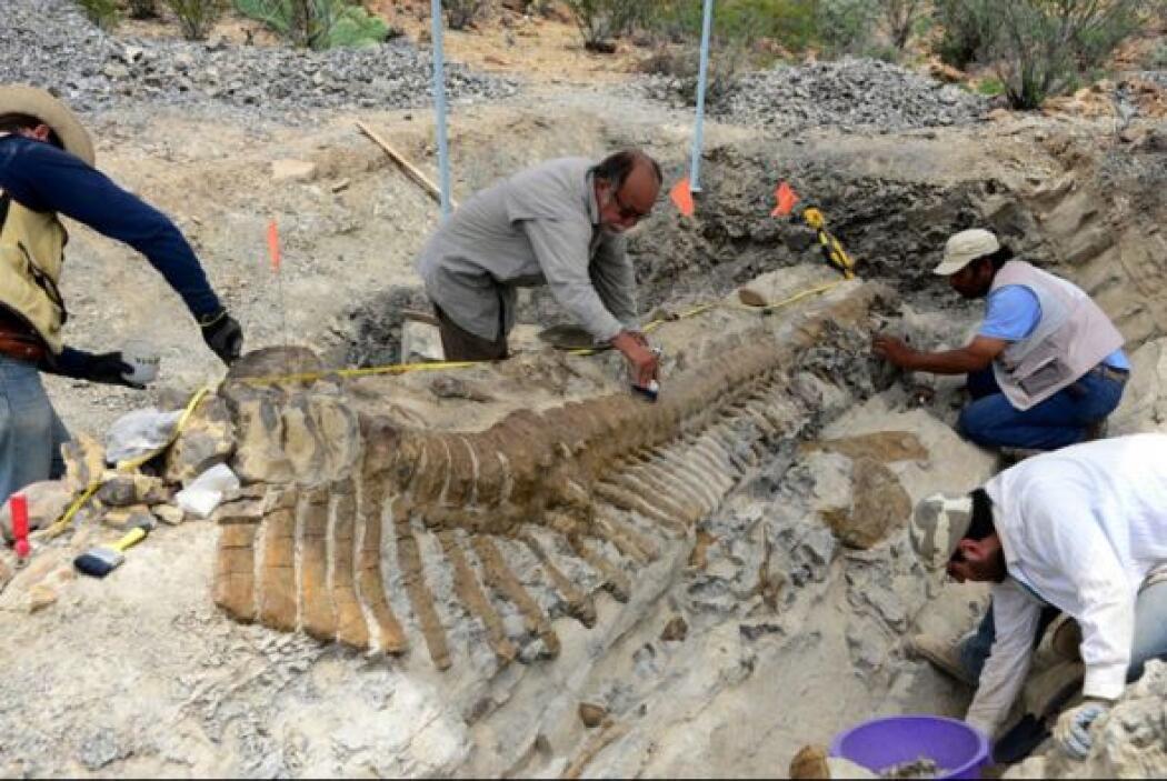 El Instituto Nacional de Antropología e Historia (INAH) de México recupe...