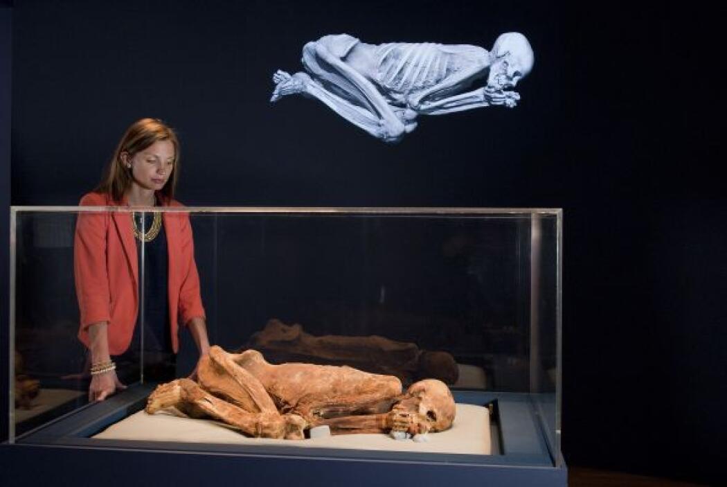 La momia más antigua de la colección del Museo Británico es la de un hom...
