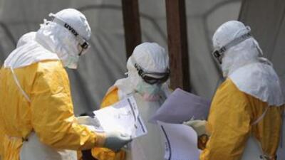 La epidemia sigue activa con dispersión intensa en los países más afecta...