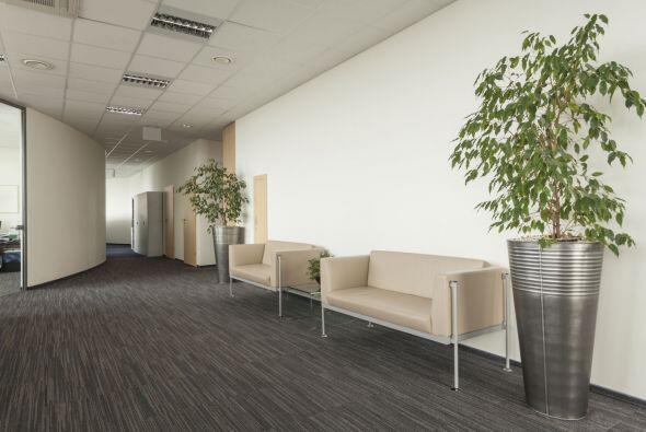 Cambio de hábitat. Muebles que quizá no fueron pensados pa...