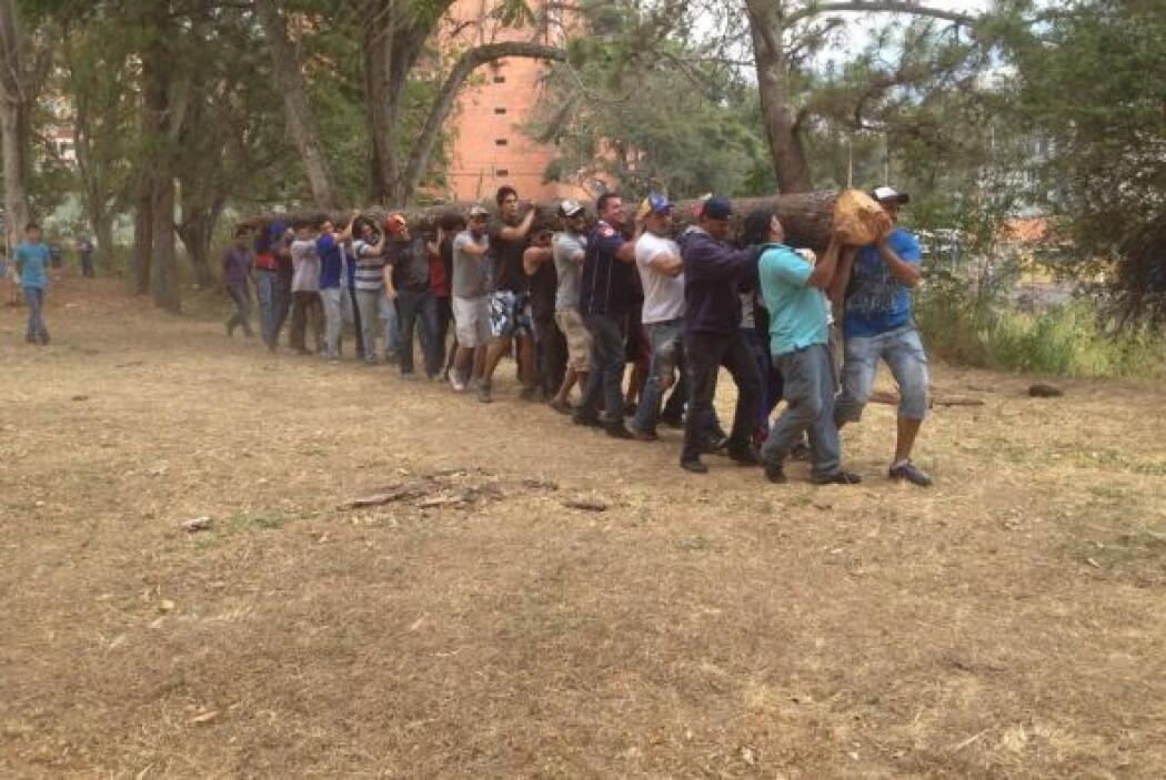Un usuario identificado como Green Peace muestra a un grupo de jóvenes c...