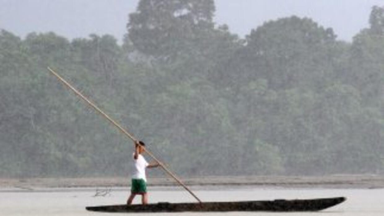 Ecuador firmar'a acuerdo para proteger el Parque Nacional Yasuní de la e...